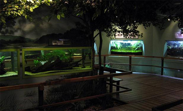 dierentuin-kuala-lumpur-5