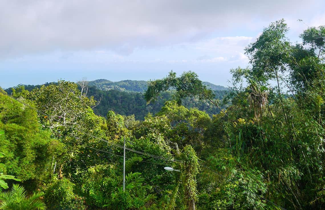 Bergen van Penang Hill