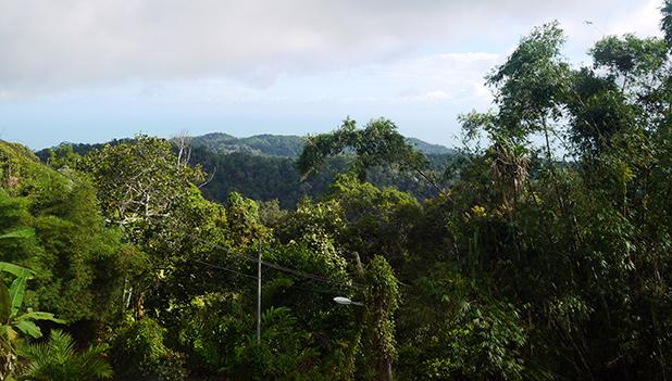 penang-hill-maleisie-9