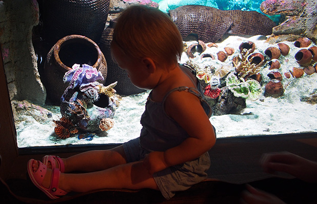 aquaria-klcc-kuala-lumpur-2