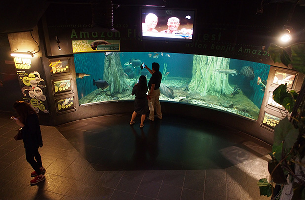 aquaria-klcc-kuala-lumpur-3