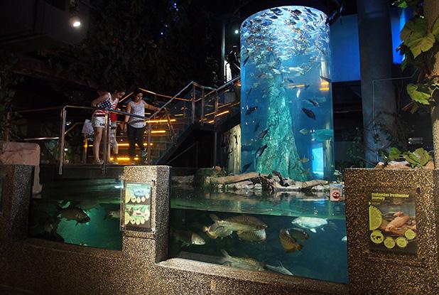 aquaria-klcc-kuala-lumpur-4