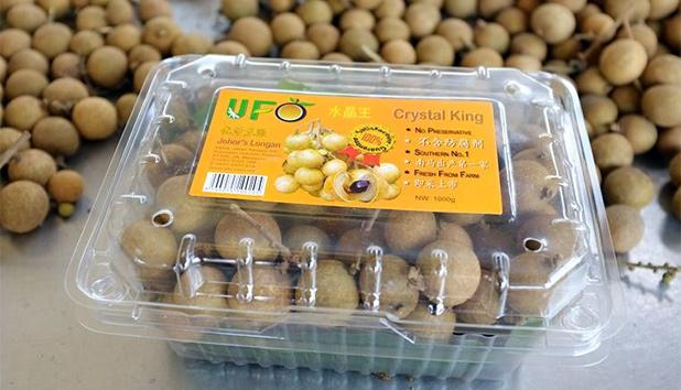 fruit-in-maleisie-9