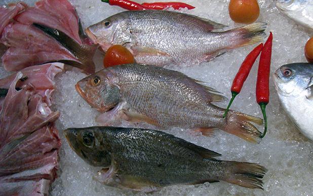 visgerechten-maleisie-2