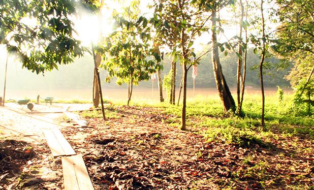 reisverslag-ilsa-2006-kinabatangan-rivier-3