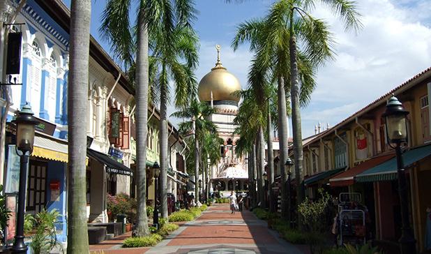 reisverslag-maleisie-michiel-sleepy-sam