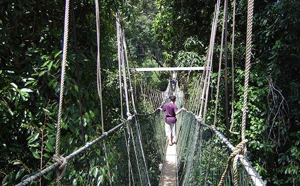 reisverslag-maleisie-michiel-taman-negara