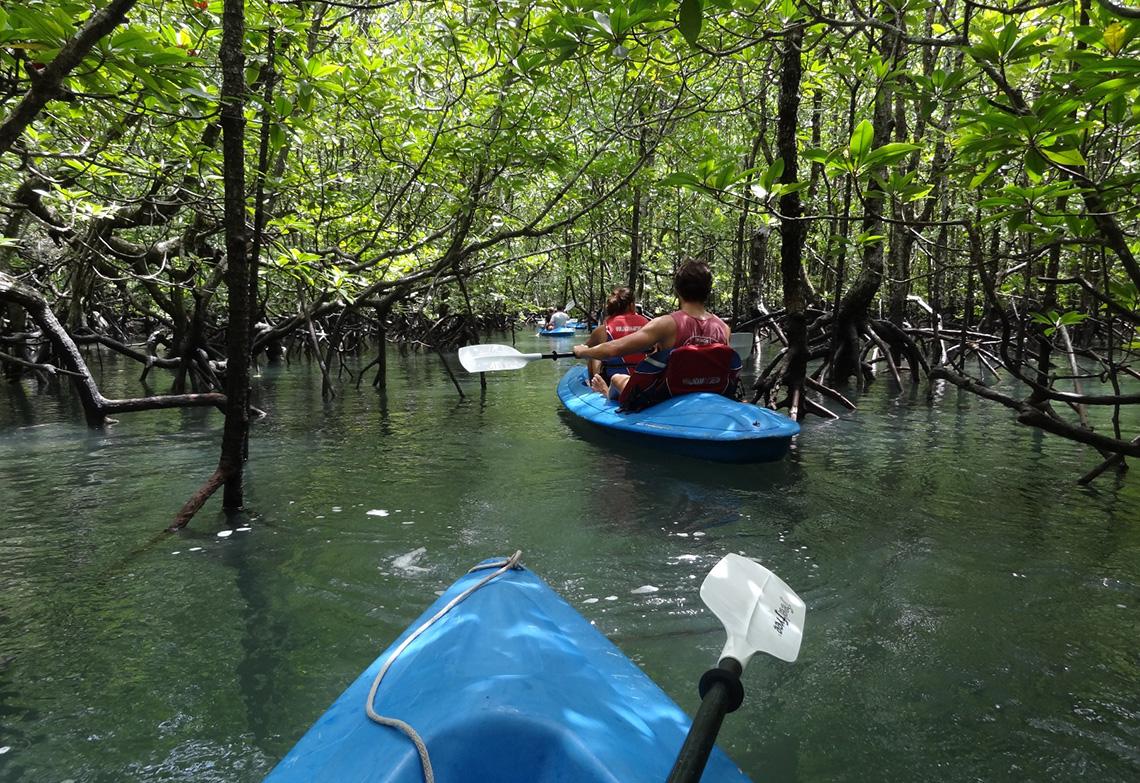 reisverslag-roan-kayak-trip-langkawi