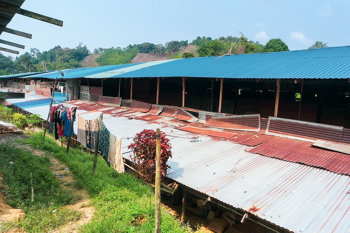203 Iban longhouse