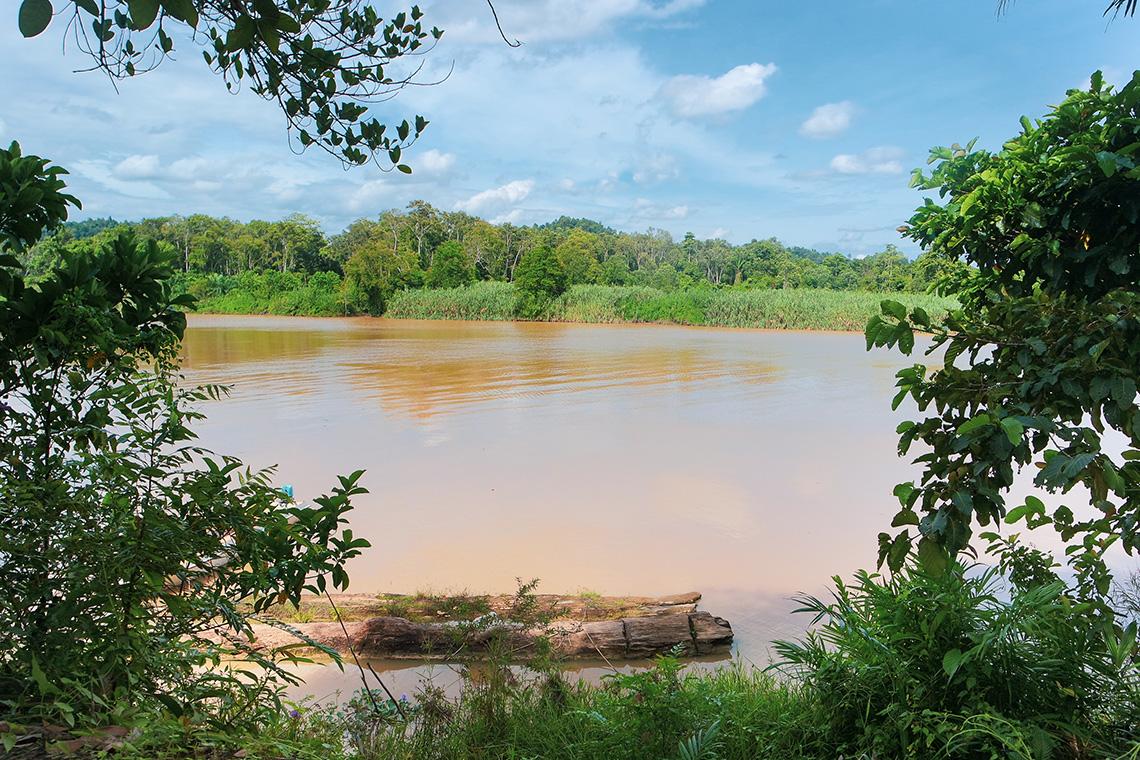 602 kinabatangan river