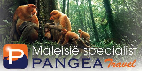 Naar het schitterende Maleisie met PANGEA Travel