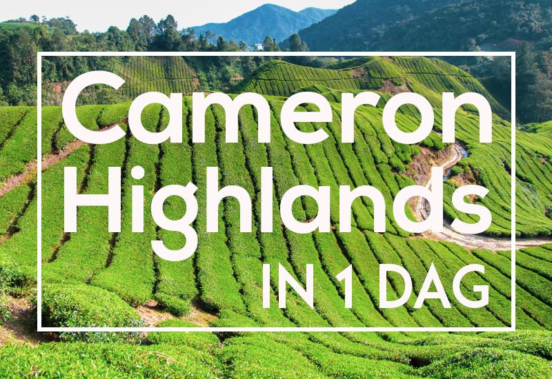 Cameron Highlands dagtour